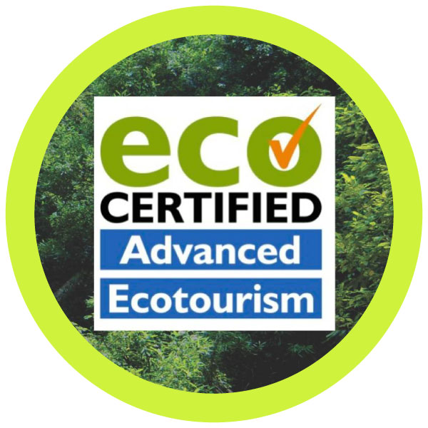 Eco Friendly Health Tours